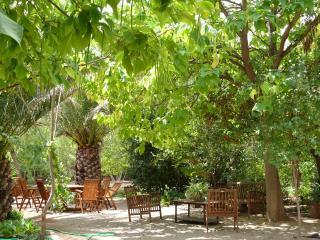 Casa en el campo con encanto, Almansa