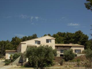 maison et chambres d'hôtes au milieu des oliviers, Mouries