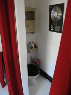 Toilet/shower off bedroom