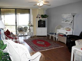 Hibiscus Resort - A103, Ocean Front, 2BR/2BTH, 3 Pools, Wifi, Saint Augustine