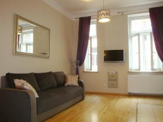 Apartment Cracovia