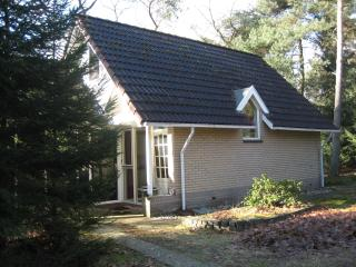 Nice chalet in the woods of The Netherlands, Holten