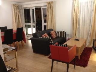 Stunning modern apartment fit for a king sleeps 4, Windsor