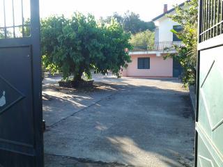 Etna green house, Piedimonte Etneo
