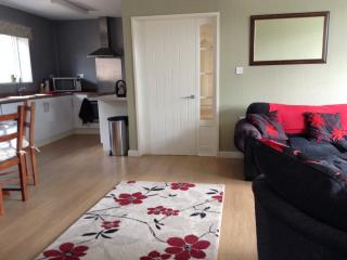 open plan living area, with fully equiped kitchen with american fridge freezer