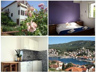 Apartment Hvar-Villa Jelsa