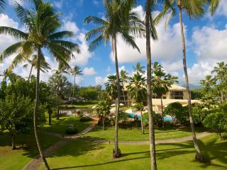 NEW LOW PRICE...STOP LOOKING! FREE Luau show.  Pool , jacuzzi,  washer,dryer.