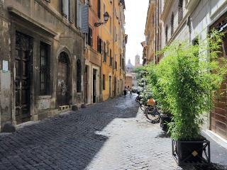 cosy 40smq apt monti, Rome