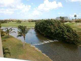Divi Golf View Studio condo - DR43, Oranjestad