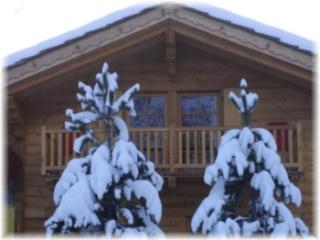 Chalet Alpina 1 bedroom apartment 200m to ski lift, La Thuile