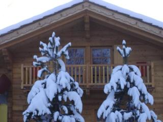 Chalet Alpina 1 bedroom apartment 200m from lifts, La Thuile
