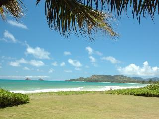 Comfortable Kailua Getaway