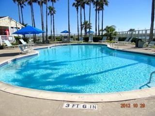 Turtle B(5th/free) :$650/Winter Week,Beach front,Wifi,Heating Pool,Gym,Sauna...