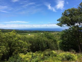 Hilltop, end of road, waterfall, wide ocean views, Honomu