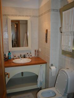 bath room of the master bedroom