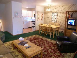 Telluride Lodge #311