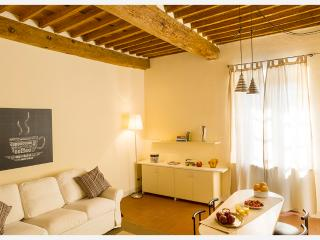 Spacious flat in front of the Town Walls, Lucca