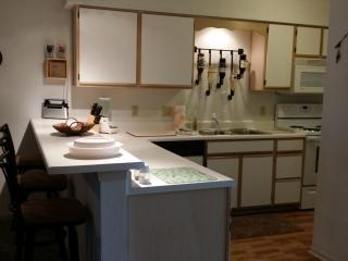 Kitchen Bar (Fully Stocked) Ice Maker, Microwave, Stove, Dishwasher and More