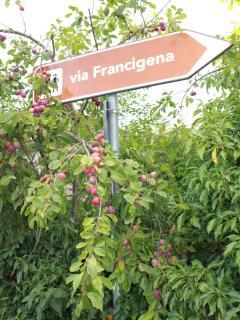 Previdè: la Via Francigena