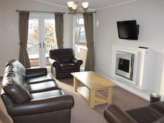 Living Room with leather sofas electric fire and flat screen TV with built in DVD player