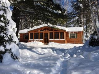 Adirondack Lake front Cabin with beach, Indian Lake