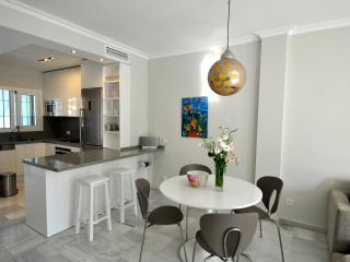 Open modern kitchen with all amenities