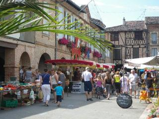 Holiday cottage with pool near Rabastens France