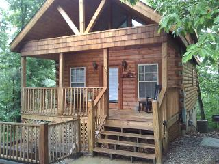 A Beary Pine Cabin near Dollywood in Pigeon Forge
