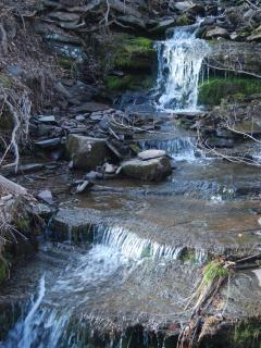 one of my waterfalls in the area