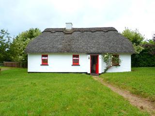 Puckane - 14949, Nenagh