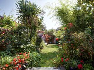 The garden in high summer
