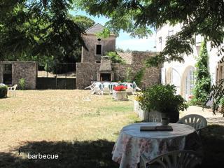 jardin barbecue au fond