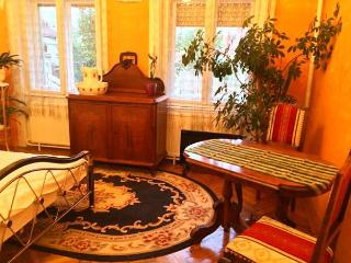 Debrecen belvárosában, nyugodt környezetben található kiadó szoba.