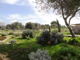 Giardini di Marzo - garden
