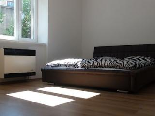 Holiday rental in Prague, Praga