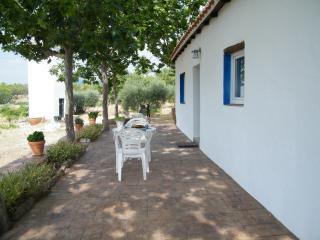 Casa Rural finca en San Martin de Valdeiglesias
