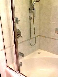 HAND HELD SHOWER / TUB IN MASTER