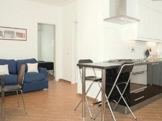 New flat, free WiFi, Sat TV, A/C, Rome City Centre