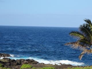 Hawaiian Hale, Pahoa