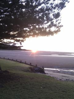 Sunrise at Moonee Beach bbq/ rest area
