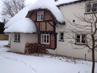 Old Lane Cottage in the Snow
