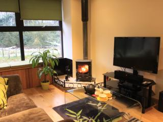 Sitting area with 3D TV and Sky and a wood burning stove for chillier nights
