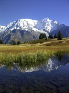 Mt Blanc from Prarion, above Les Houches