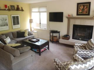 Sun Vail 11C - Mountain View 3 Bedroom, 2 Bath