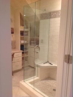 Elegant master bathroom.