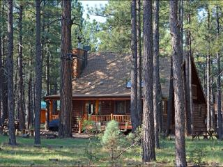 Log Cabin On National Forest
