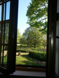 view on the garden from one of the windows