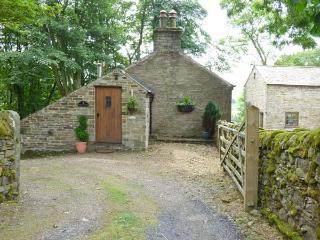 BOTHY, luxurious, king-size bed, Jacuzzi bath, pet-friendly, near Alston, Ref