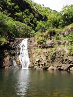 Waimea Valley – This is a historical nature park with botanical gardens and waterfalls. (about 5-minute drive)