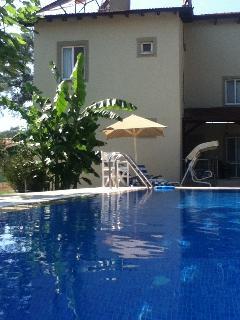 Lovely pool & gardens